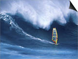 Person Windsurfing in the Sea Prints