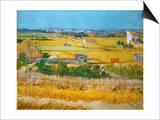 Van Gogh: Wheatfield, 1888 Prints by Vincent van Gogh