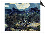 Olive Trees with the Alpilles in the Background Prints by Vincent van Gogh