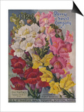 Giant Snapdragons, Perry Seed Company Prints