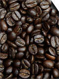Coffee Beans Prints by Stephen Pennells