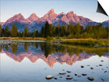 Sunrise on the Teton Mountains at Schwabacher Landing Posters by Mike Cavaroc