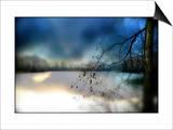 A Winter Rural Scene Print by Mia Friedrich