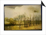 A Country Scene with Small Trees Poster by Mia Friedrich