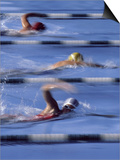 Swimmers Racing Art