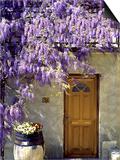 Lilacs Posters