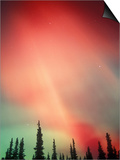 Aurora Borealis or Northern Lights, Alaska, USA Art by Tom Walker