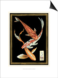 Koi Fish on Black II Posters by Chariklia Zarris
