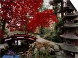 Japanese Garden Hillwood Museum and Gardens, Washington, D.C. USA Art
