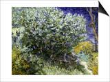 Van Gogh: Lilacs, 19Th C Prints by Vincent van Gogh