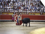 Bullfight, Pamplona, Spain Prints
