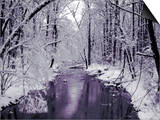 Snow Covered Trees along Creek in Winter Landscape Prints by Jan Lakey