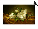 Magnolias on Gold Velvet Cloth Print by Martin Johnson Heade