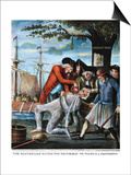 Tarring & Feathering, 1773 Posters