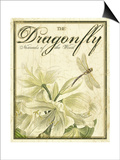 The Dance of Dragonfly II Posters by Kate Ward Thacker