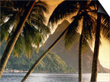 The Pitons, Soufriere, St. Lucia Poster