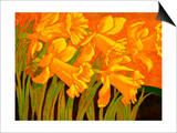 Big Daffodils Art by John Newcomb