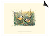 Chickadees and Pussy Willow Posters by Janet Mandel