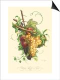 Plentiful Fruits II Prints by Jean Louis Prevost