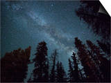 The Milky Way Shines Above the Forest in the San Juan Mountains of Southern Colorado. Posters by Ryan Wright