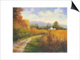 Autumn Country Road Prints by Mary Jean Weber