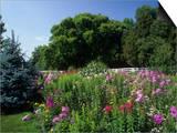 Flower Garden, Broadmore Gardens, Kentucky, USA Prints by Adam Jones