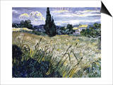 Landscape with Green Corn Poster by Vincent van Gogh