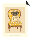 Pampered Pet I Prints by Chariklia Zarris