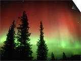 Aurora Borealis or Northern Lights, Alaska Range, Alaska, USA Print by Tom Walker