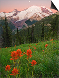 Sunrise with the Moon over Mount Rainier with Paintbrush (Castilleja) Flowers in the Meadow Print by Geoffrey Schmid