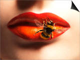 Bee Sting on Lips Prints by Graeme Montgomery