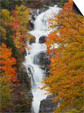 Silver Cascade, White Mountain National Forest in Autumn, Crawford Notch State Park, New Hampshire Posters by Robert Servranckx