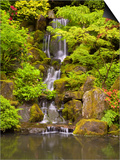 Heavenly Falls in Summer in the Japanese Garden, Portland, Oregon, USA Prints by David Cobb