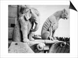 Notre Dame: Gargoyles Kunst von Eugène Viollet-le-Duc
