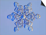 Snowflake Prints by Kenneth Libbrecht