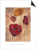 Textured Poppies I Art by Marietta Cohen