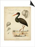 Heron Anthology I Art