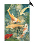 Reflecting Koi II Prints by Megan Meagher