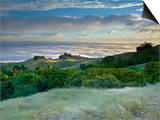 A Strong Breeze and Long Exposure Time Softened the Flowing Grasses and Trees on Mt Tamalpais Poster by Patrick Smith