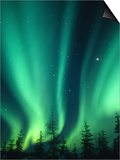 Aurora Borealis or Northern Lights, Alaska, USA Prints by Tom Walker