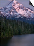 Mt. Hood at Twilight with Lost Lake in the Foreground, Oregon, USA Prints by David Cobb