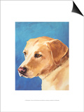 Dog Portrait, Yellow Lab Posters by Jill Sands