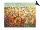 Field of Spring Flowers II Poster by Tim O'toole