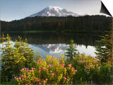 Mount Rainier with its Reflection in Reflection Lake at Sunrise, Mount Rainier National Park Posters by David Cobb