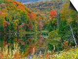 Forest and Pond in the Fall, Green Mountains, Vermont, USA Art by Gustav Verderber