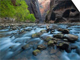 The Virgin River and Virgin River Canyon in Zion National Park, Utah Art by David Cobb