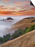 Fog Bank over San Francisco Bay Viewed from Mt. Tamalpais, California, USA Print by Patrick Smith