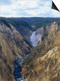 Lower Yellowstone Falls and Grand Canyon of the Yellowstone, Yellowstone National Park, Wyoming Prints by Adam Jones