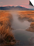Borax Springs and the Steens Mountains in Southeastern Oregon, USA Prints by David Cobb