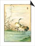 Oriental Cranes II Reprodukcje autor Vision Studio